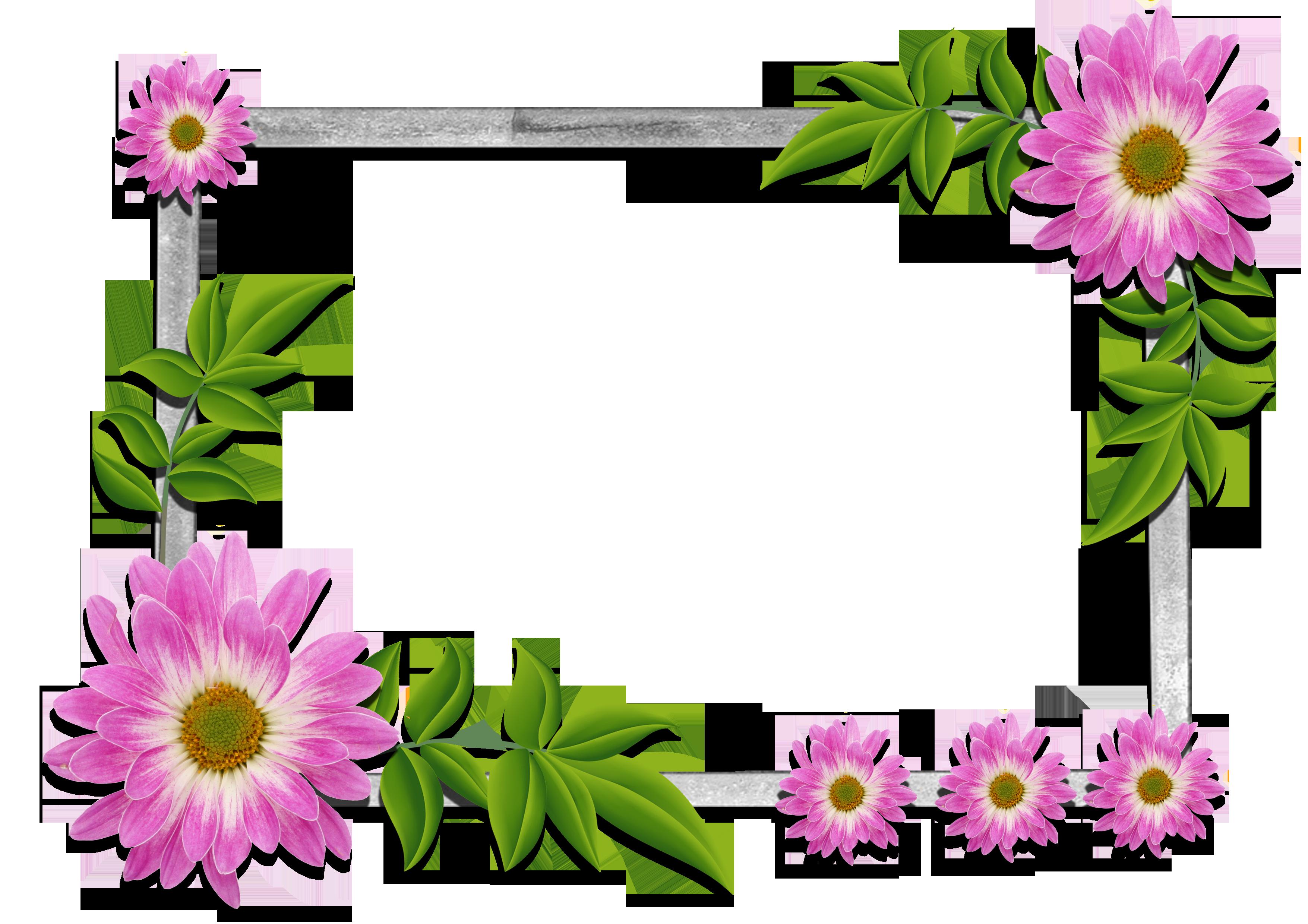 beautiful frames for photos free download - Google'da Ara ...