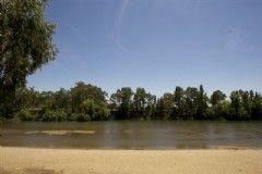 9651444443be8673dd447020ccb2bc5b - City Of Wagga Wagga Botanic Gardens