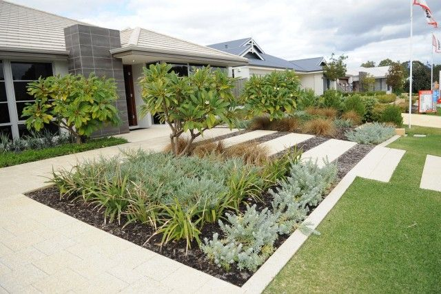 Front yard xeriscape | Modern front yard