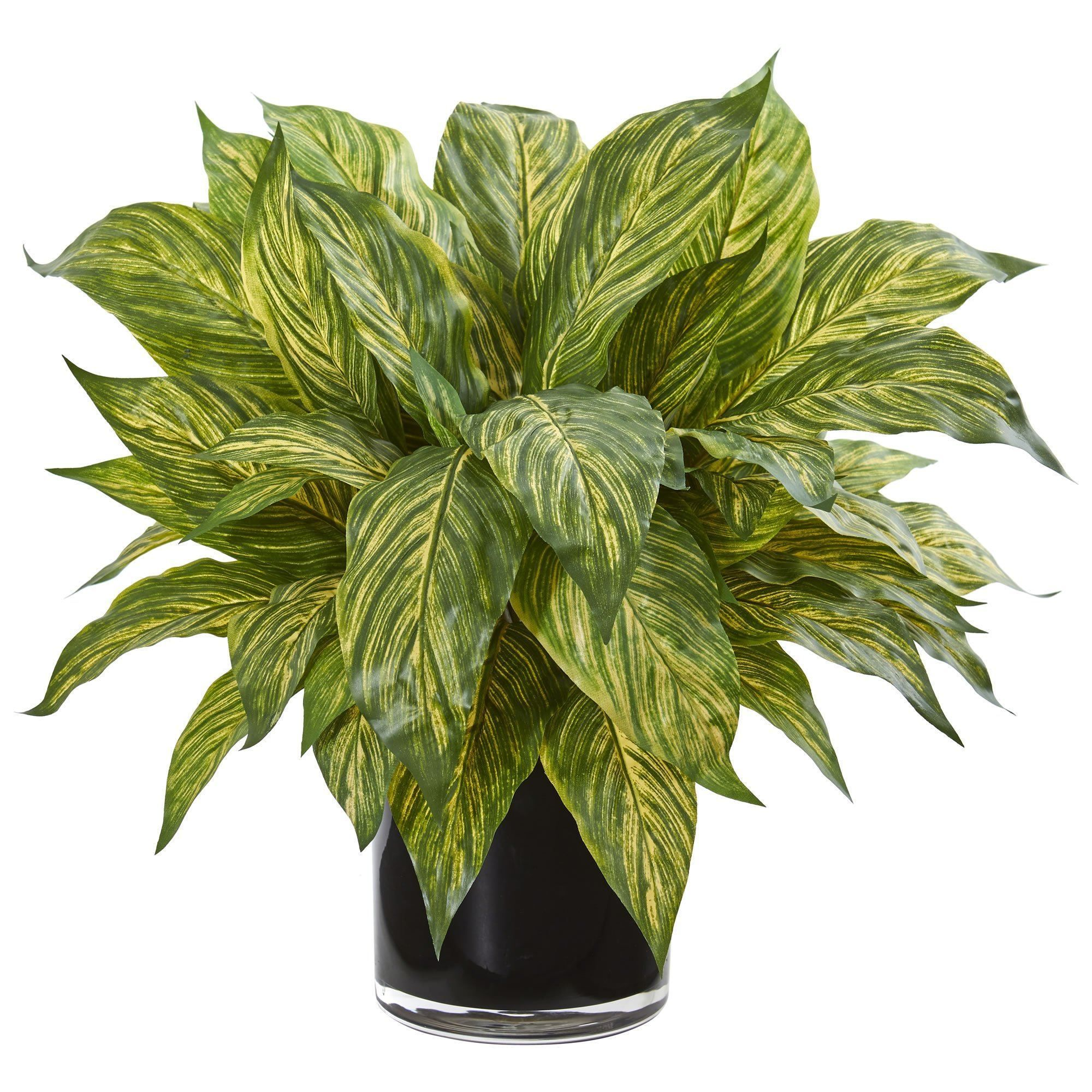 Musa Leaf Artificial Plant In Glossy Black Vase In 2021 Artificial Plants Black Vase Plants