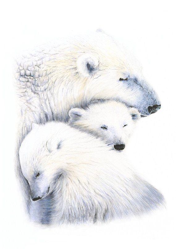 Baby Bear Animal Nursery Prints Nursery Wall Art Polar