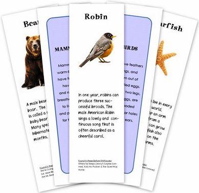 Free Educational Printables For Kids Animal