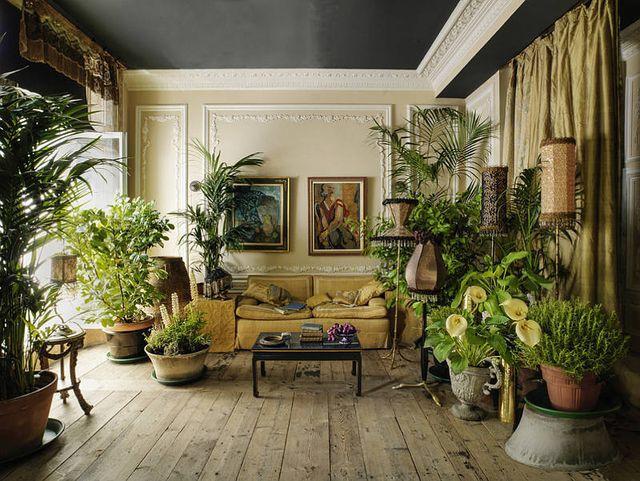 kolonialstil zimmerpflanzen drinnen wohnzimmer einrichtung einrichten und wohnen zuhause deko dschungelhaus - Zimmerpflanzen Warme Wohnzimmer