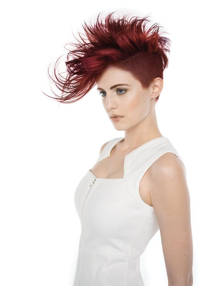 holiday cool texture hair collections