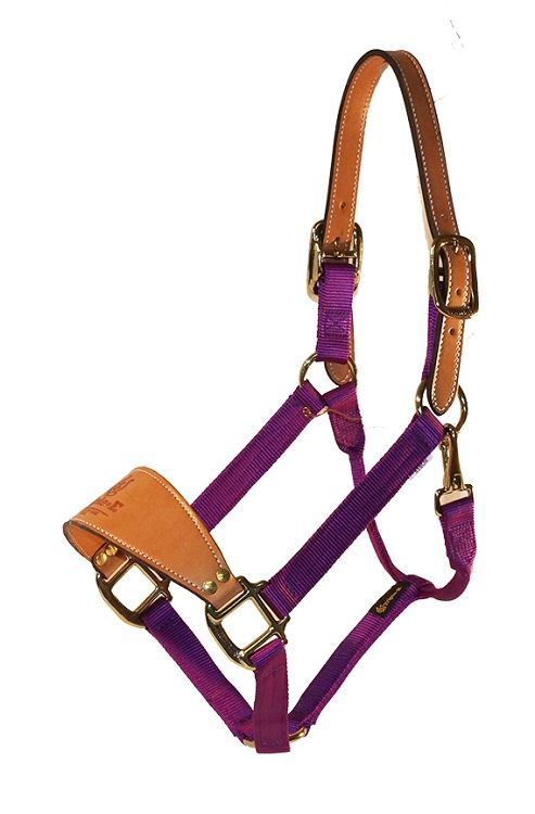Showman PURPLE Triple Ply Nylon Western Horse Halter w// Leather Crown NEW TACK!