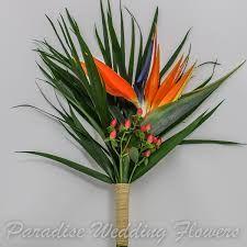 Image result for bird of paradise flower wedding