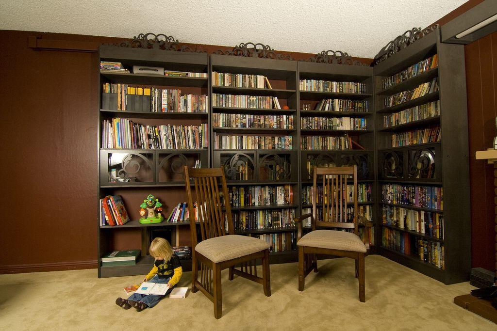 Bookshelves to fill the room Decorative glass doors flow in the - einrichtungsdeen fur hausbibliothek bucherwand