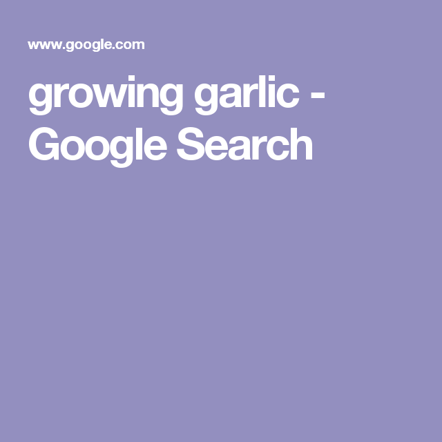 growing garlic - Google Search
