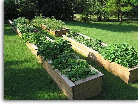 DIY $10 raised cedar garden bed | garden | Pinterest | Gardens ...