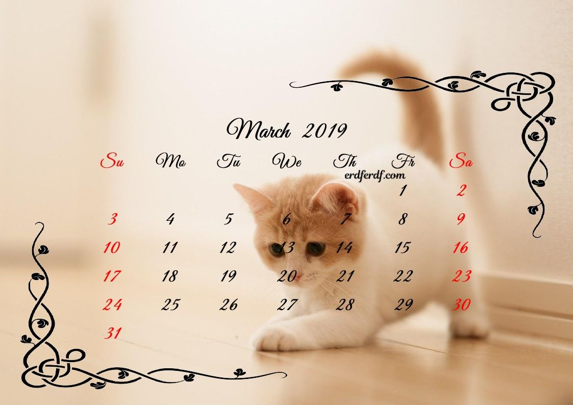 Printable Calendar 2019 Kitten December 3 March Printable Calendar 2019 Cute Cats | Monthly Calendar 2019