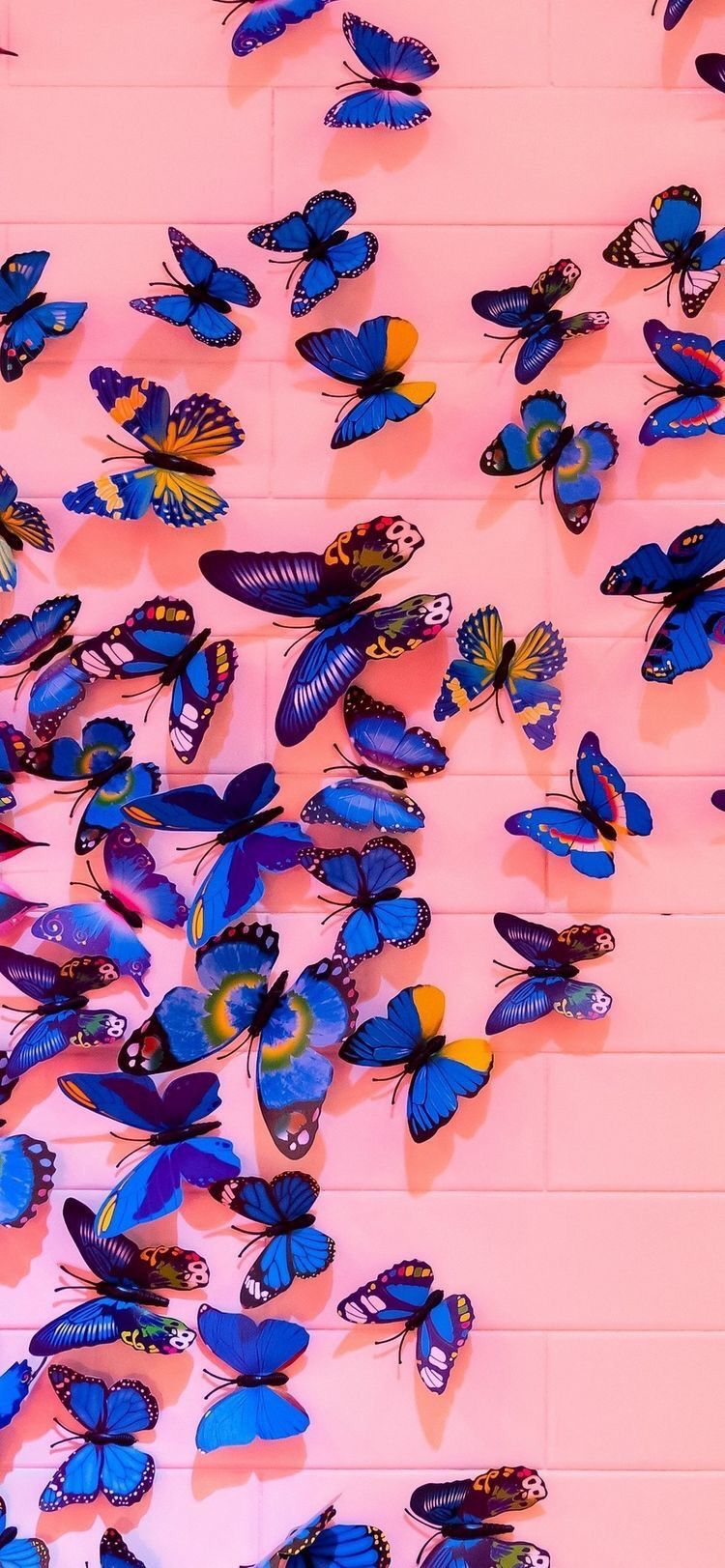 Pin By Abbie Payne On Aesthetically Pleasing In 2020 Butterfly Wallpaper Iphone Aesthetic Iphone Wallpaper Iphone Wallpaper