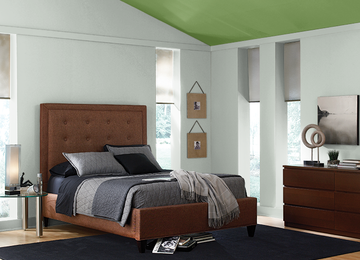 This is the project I created on Behr.com. I used THYME GREEN(420D-6),CONTEMPLATION(700E-3),