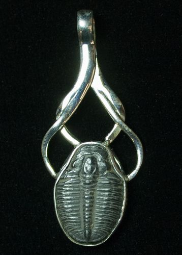 Sterling silver elrathia trilobite pendant item 8595 trilobite sterling silver elrathia trilobite pendant mozeypictures Image collections