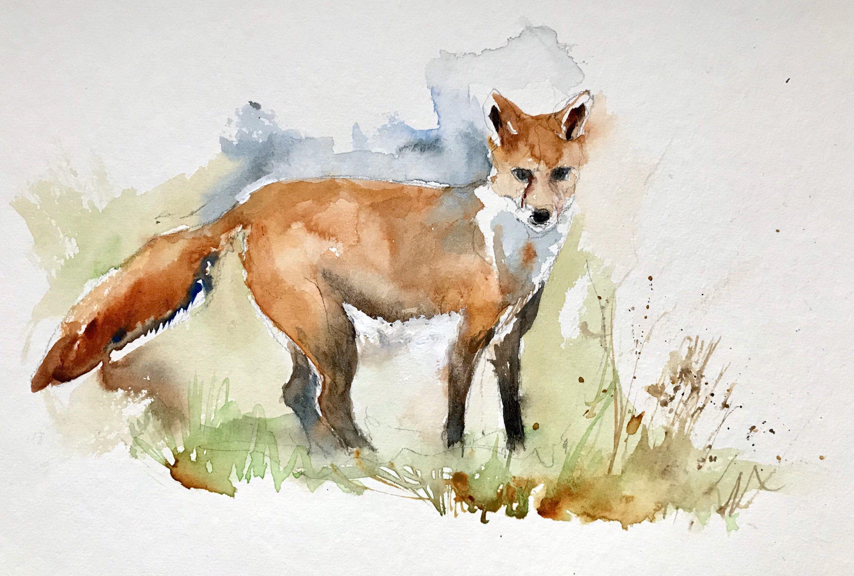 Aquarelle Peinture Originale Renard Renardeau Roux Animal