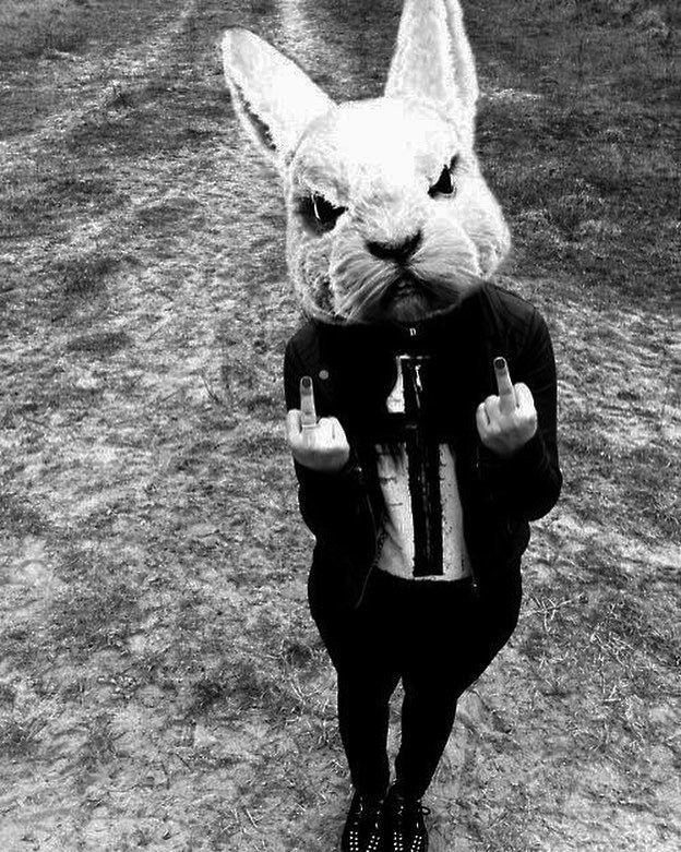 пошаговую инструкцию картинки кролик в костюме чистый, звенящий