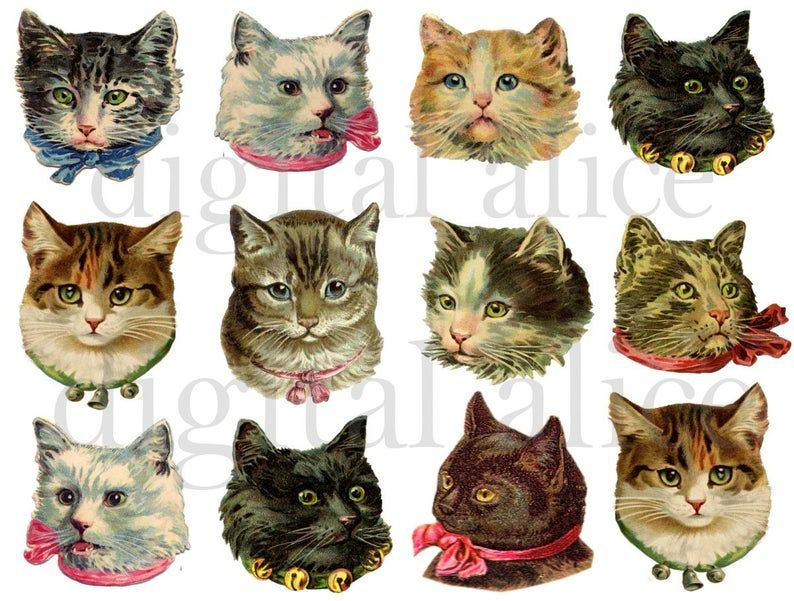 Vintage Victorian Cats Fluffy Cute Kitty Cat Heads Instant Download Digital Printable Scrap Collage Sheet Diy Print Png And Jpg Cute Cats Kitty Cute
