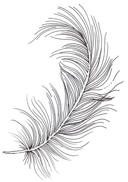 Hand Drawn Feather Clipart Vector Rustic Feather Drawing Etsy In 2021 Feather Drawing Feather Illustration How To Draw Hands