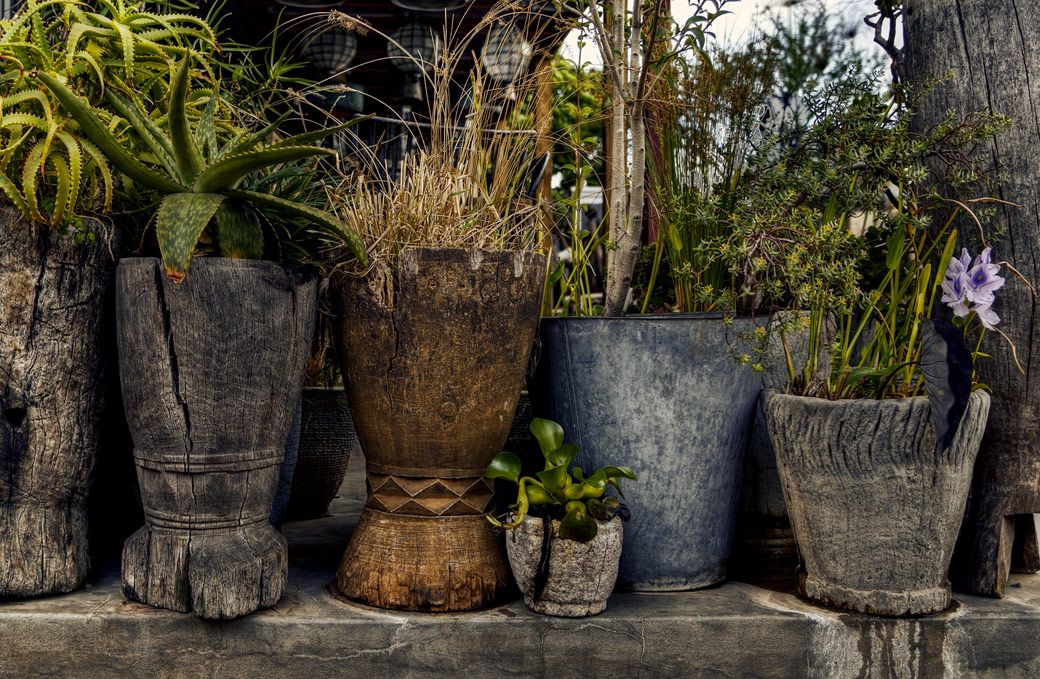 Outdoor Planters At Amatuli Johannesburg Black Vase Green Vase Wooden Vase
