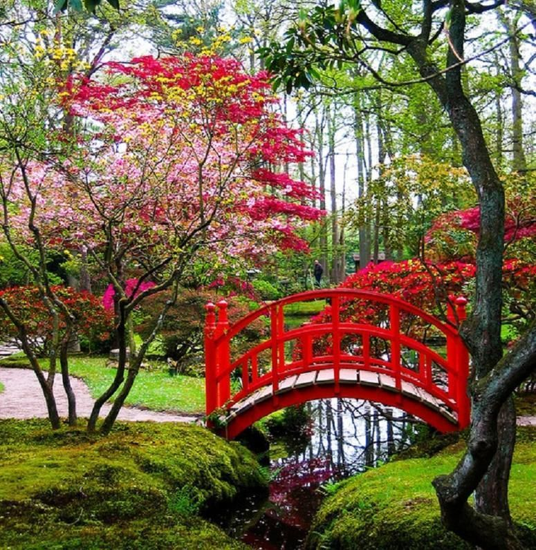 Japanese Inspired Garden In Grant Park: Red Bridge...love The Colors