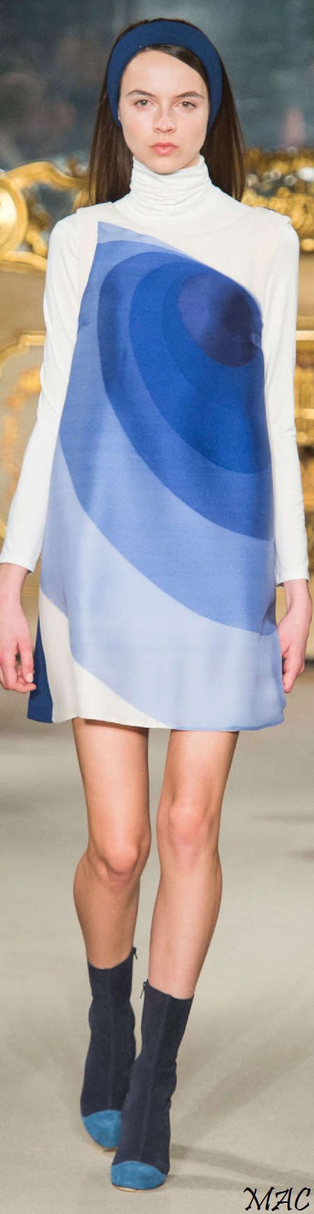 Fall 2015 Ready-to-Wear Chicca Lualdi