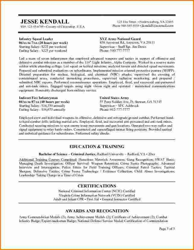 examples federal government resumes expense report template resume - sample internship report template