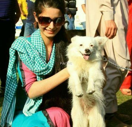 Asim Pets Club Lahore Www Paktive Com Asim Pets Club 1073sa14