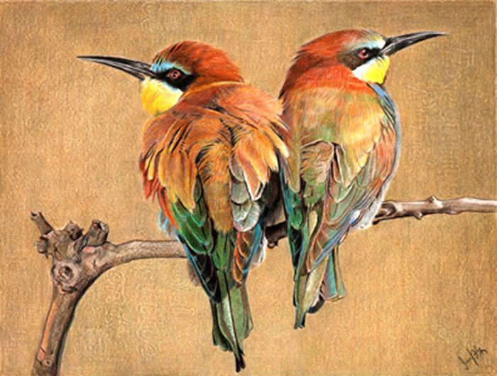Face off by Sunil Joshi (colored pencil)