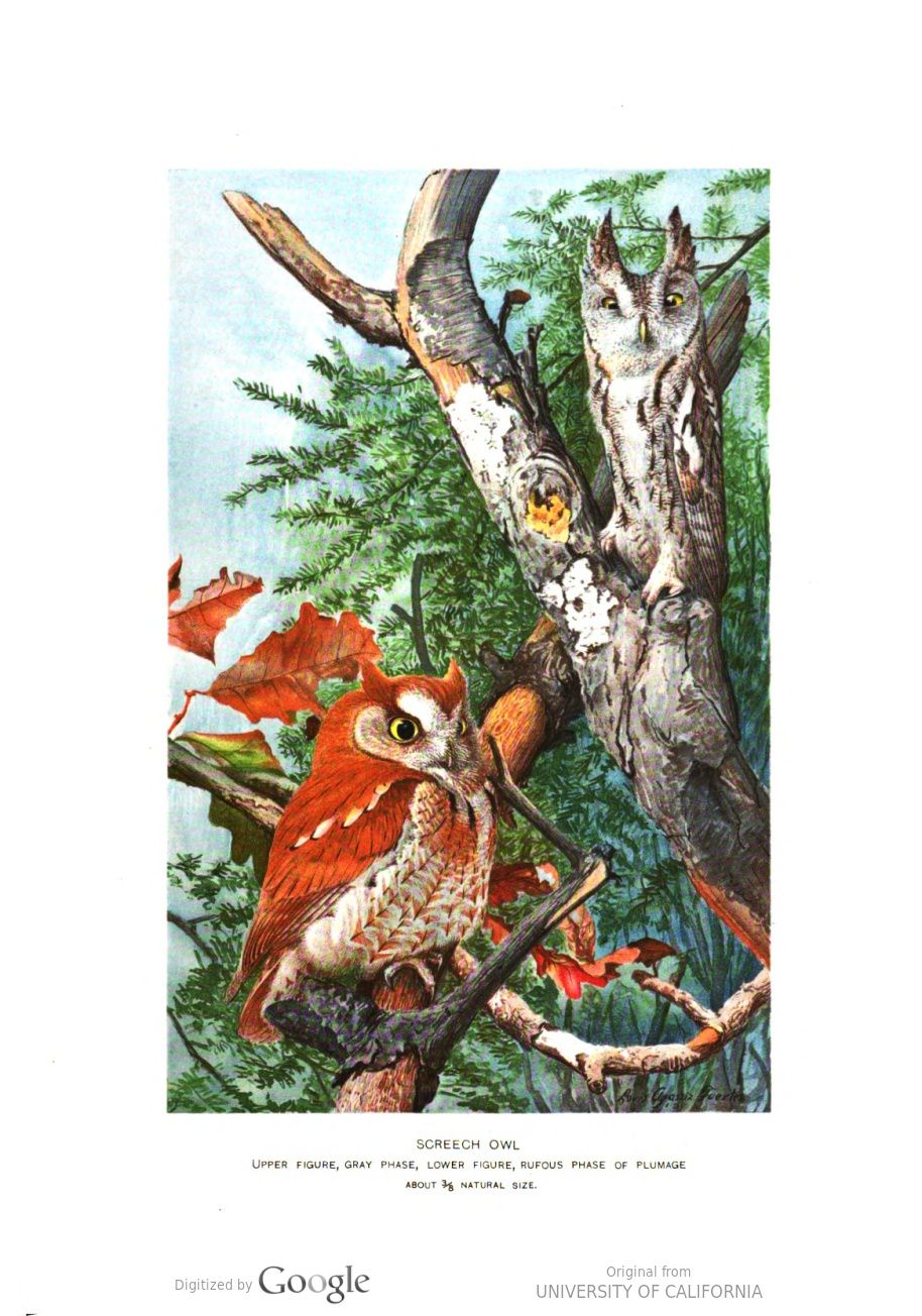 Annual Report of the Forest, Fish and Game Commission of