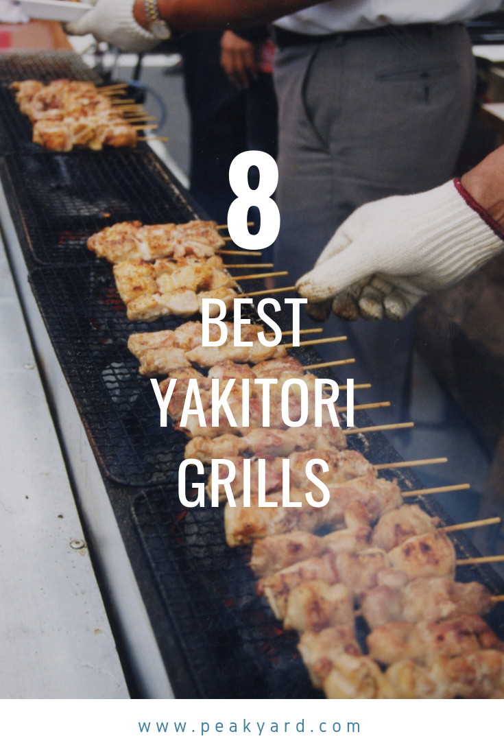A Guide To The Best Yakitori Grills Food Cooking Skewers Grill