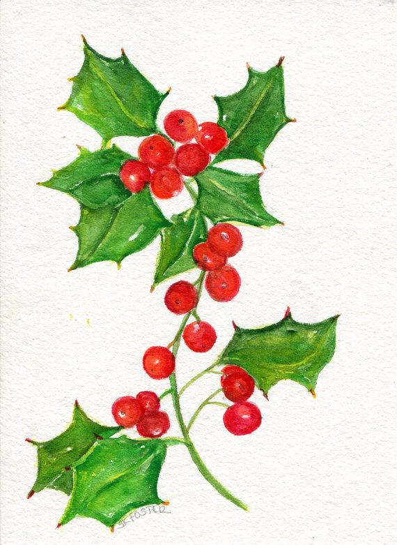Holly Red Berries Watercolor Painting Original 5 X 7 Botanical