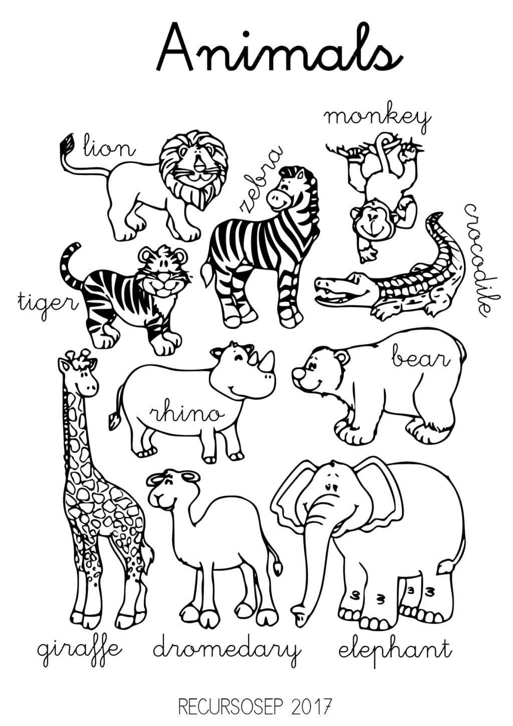 English Animals Worksheets Animales Salvajes Para Colorear