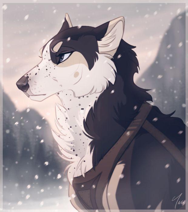 my name is tasha i m a pretty wolf and i m very fierce and