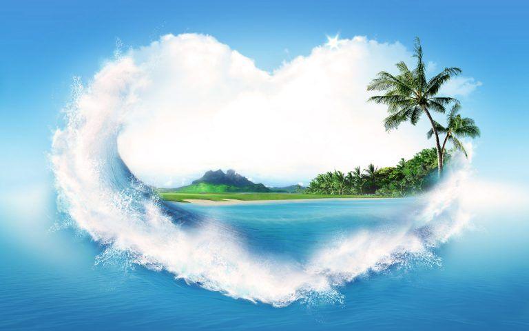 Nature Love Wallpaper Hd Palmier Ecran