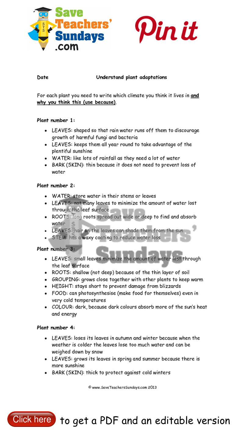 worksheet Worksheets For Primary 1 plant adaptations worksheets go to httpwww saveteacherssundays year 3 lesson 1 plans and other primary teaching resources