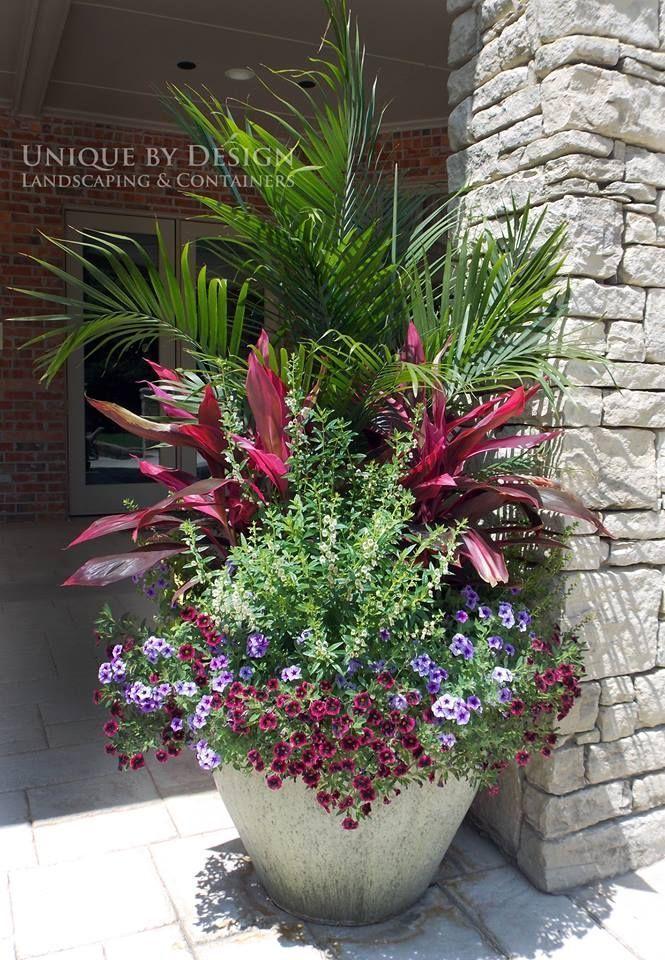 Tropical Patio Design Ideas Renovations Photos Uniquecontainergardeningideas Flowers Pinterest Container Gardening Garden And Plants