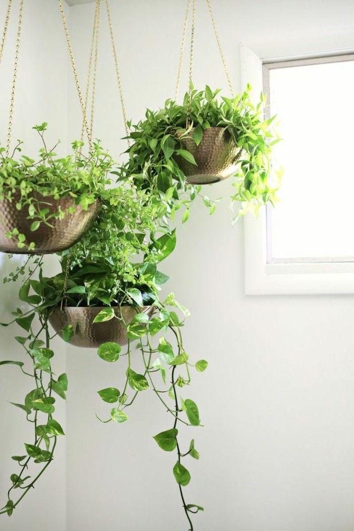 Kleine Kuche Einrichten 44 Praktische Ideen Fur Individualisierung Des Kleines Raumes Pflanzen Kleine Kuche Einrichten Kuchenpflanzen