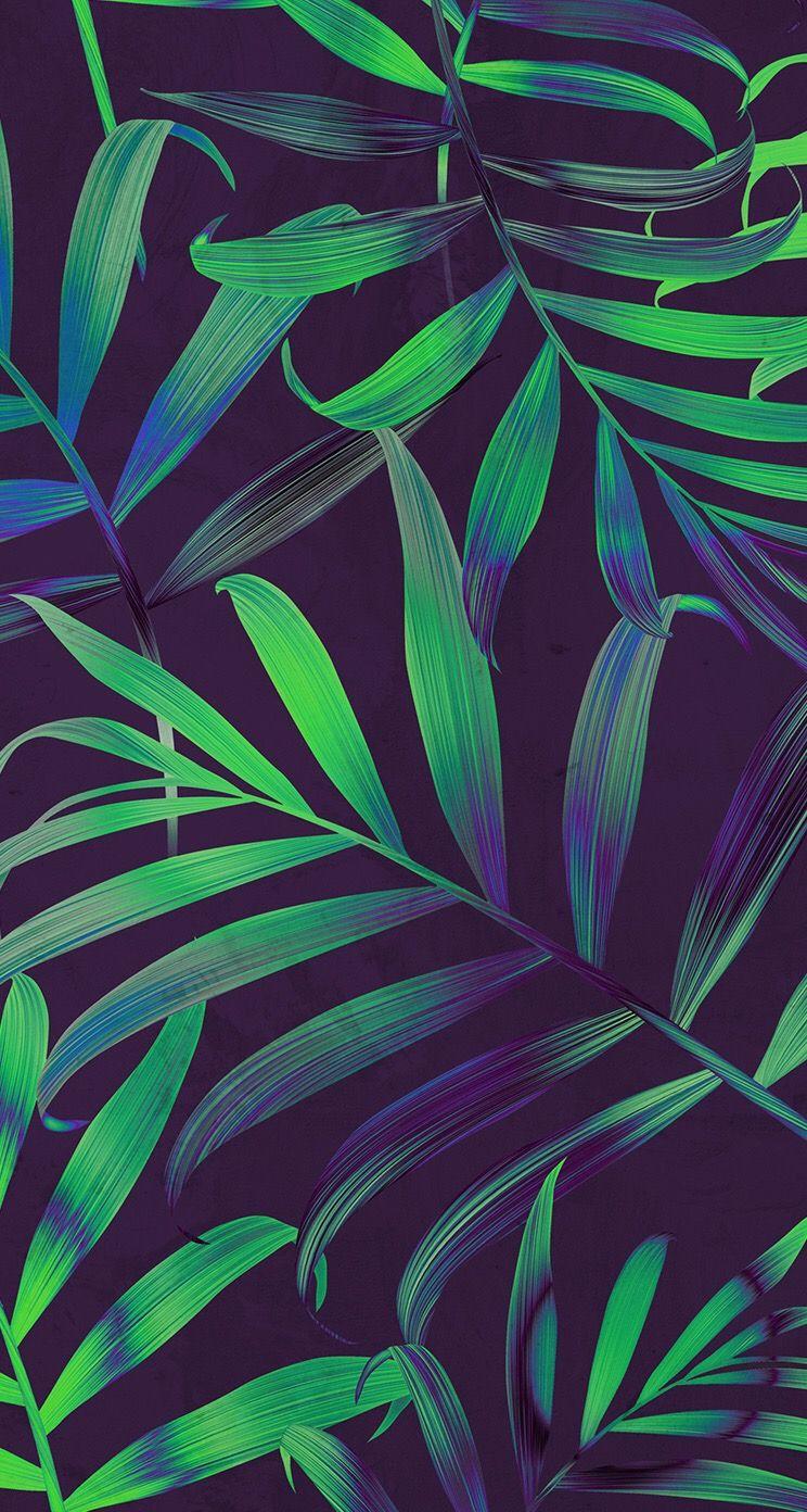 Wallpaper iphone tropical - Tropical Leaves Iphone Wallpaper