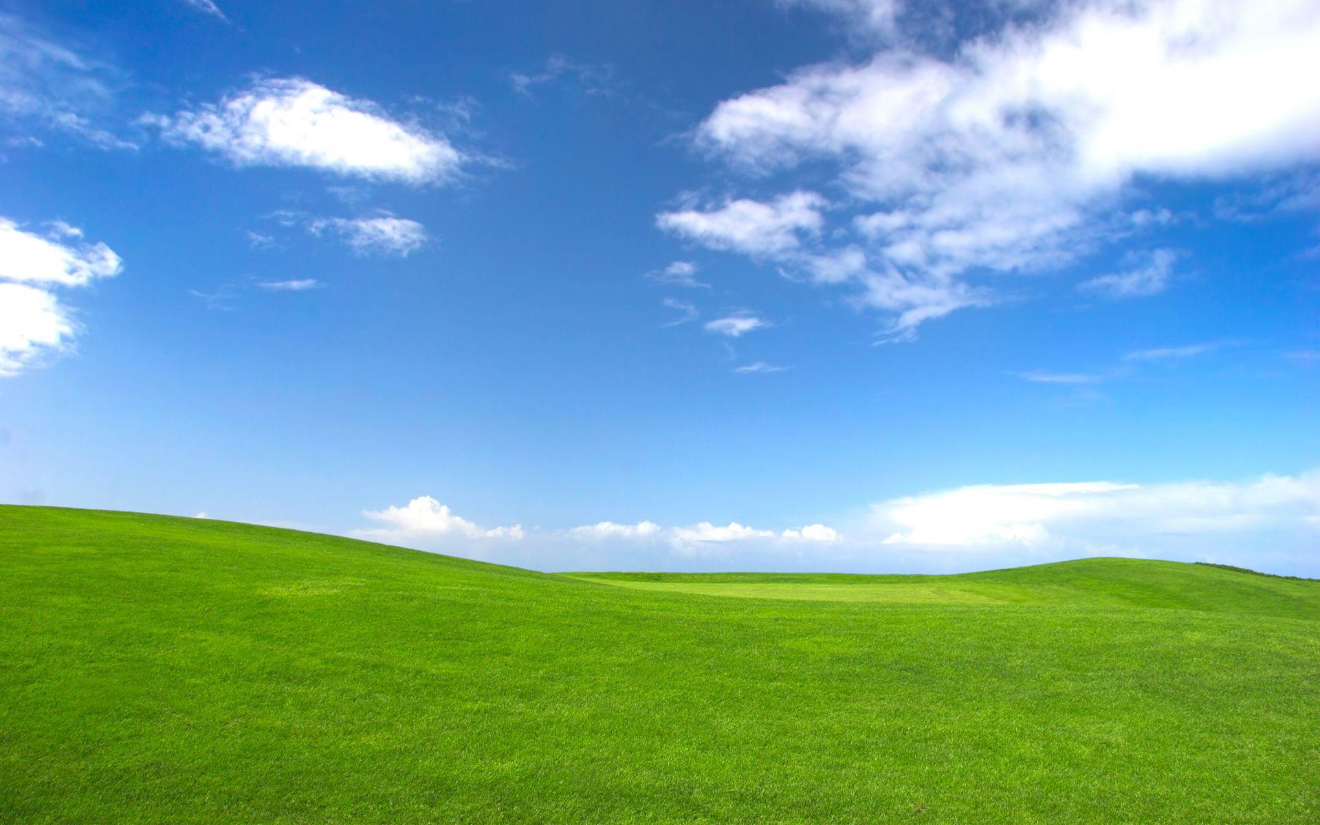 Hill 1920x1200 Grass Wallpaper Desktop Background Pictures Green Nature Wallpaper