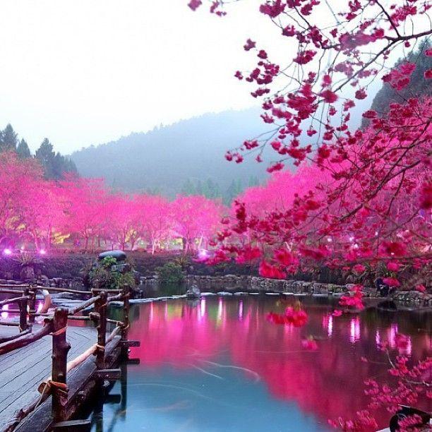 Yuchi Taiwan Tempat Yang Indah Liburan Impian Fotografi Pemandangan