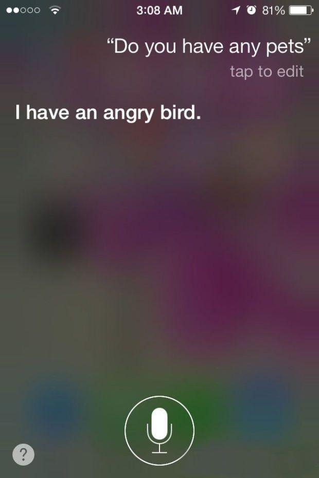 22 Hilarious Siri Responses To Pointless Questions Siri Funny Funny Siri Responses Funny Siri Questions