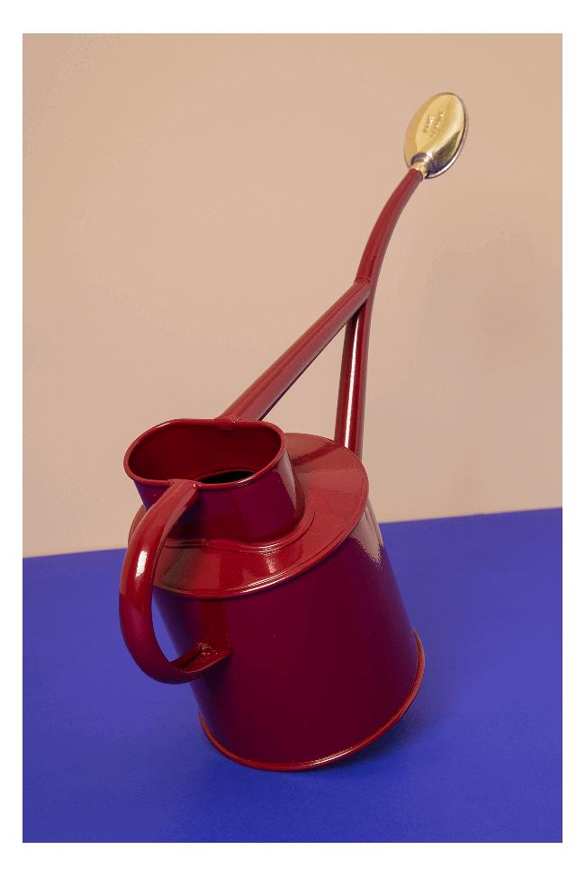 Arrosoir Fait Main Dans La Pure Tradition Britannique En Metal Galvanise Parfait Pour Les Petits Appartements Arrosoir Metal Galvanise Brumisateur