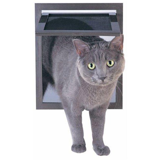 Petsafe Pet Screen Door With Images Pet Screen Door Cat Door Dog Door