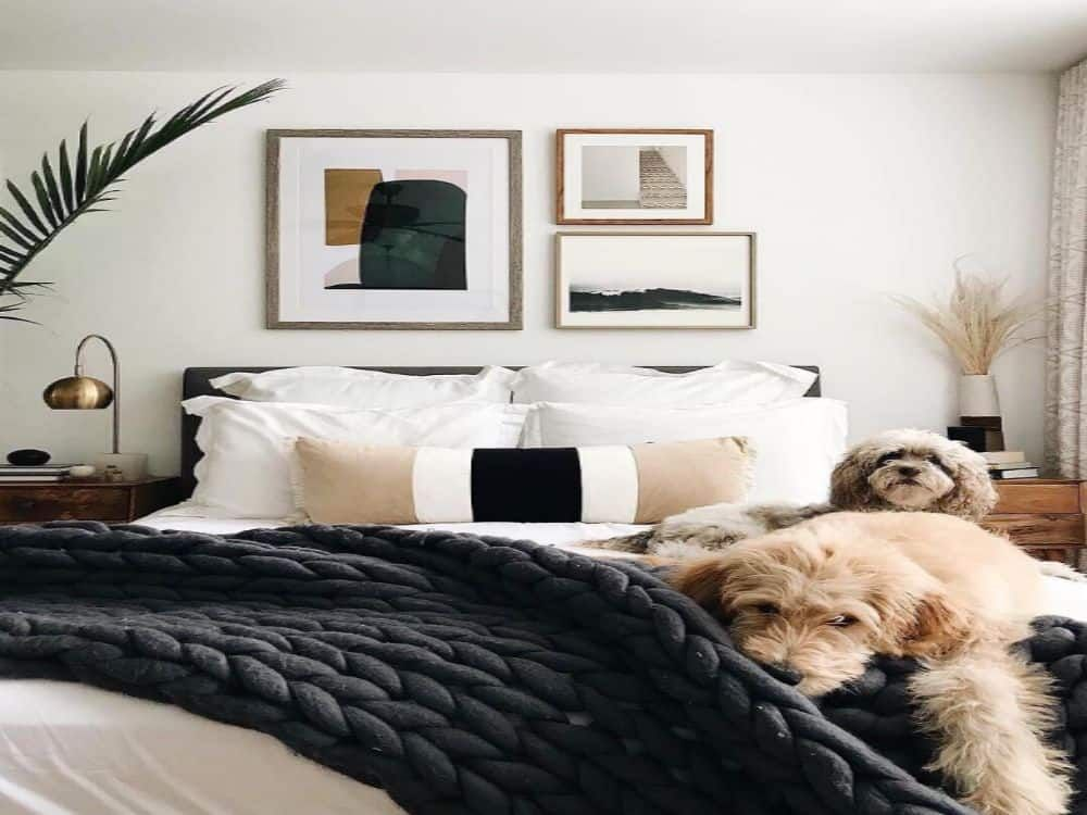 10 Fun Apartment Decor Ideas To Spice Up Your Living Space ...