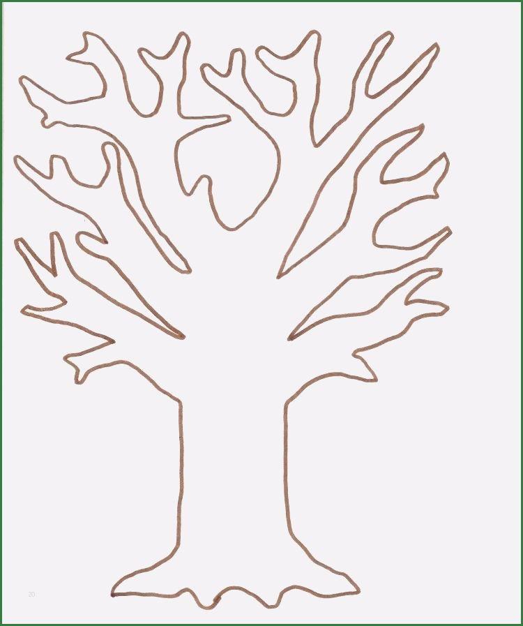 20 Grossartig Baum Basteln Vorlage In 2020 Baum Vorlage Herbst Vorschule Fensterbilder Herbst Vorlagen