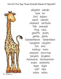 Let S Go To The Zoo Zoo Activities Zoo Animals Names Zoo Animal Activities