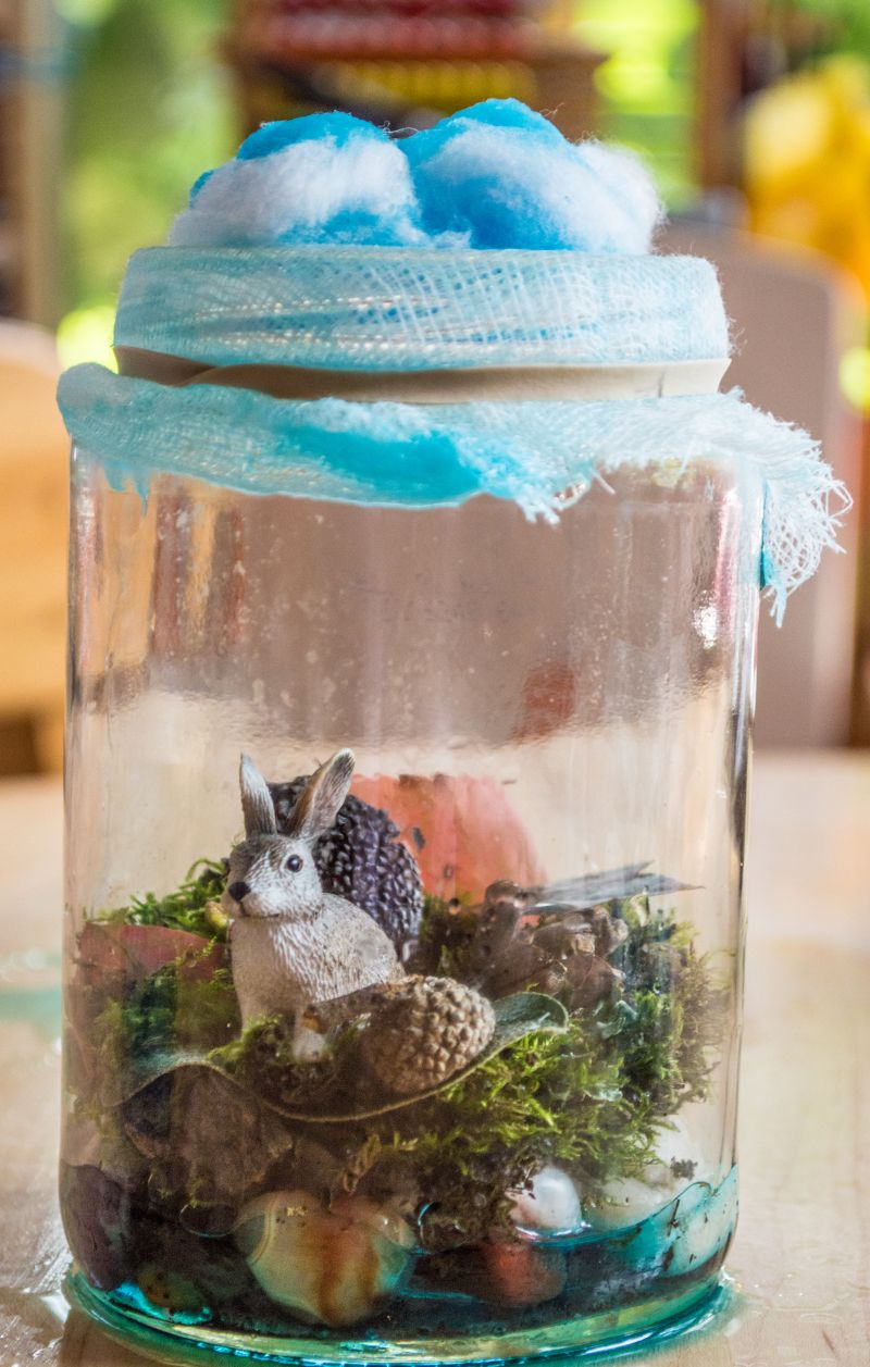 Science In A Bottle Diy Terrarium And The Water Cycle