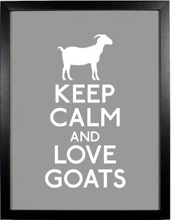 Backyard Farming Goats Vs Cows Cute Goats Baby Goats Goats