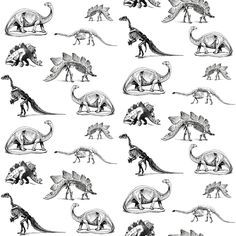 Dinosaur Skeletons Black And White Dino Fabric By