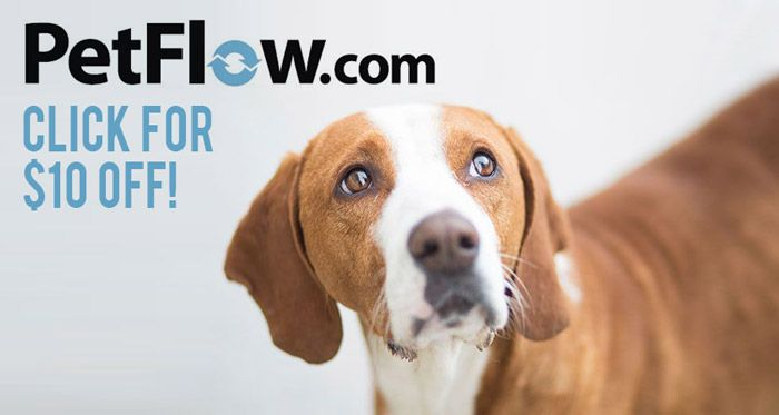 Petflow Promo Code 10 Free Plus A Petflow Dog Food Delivery