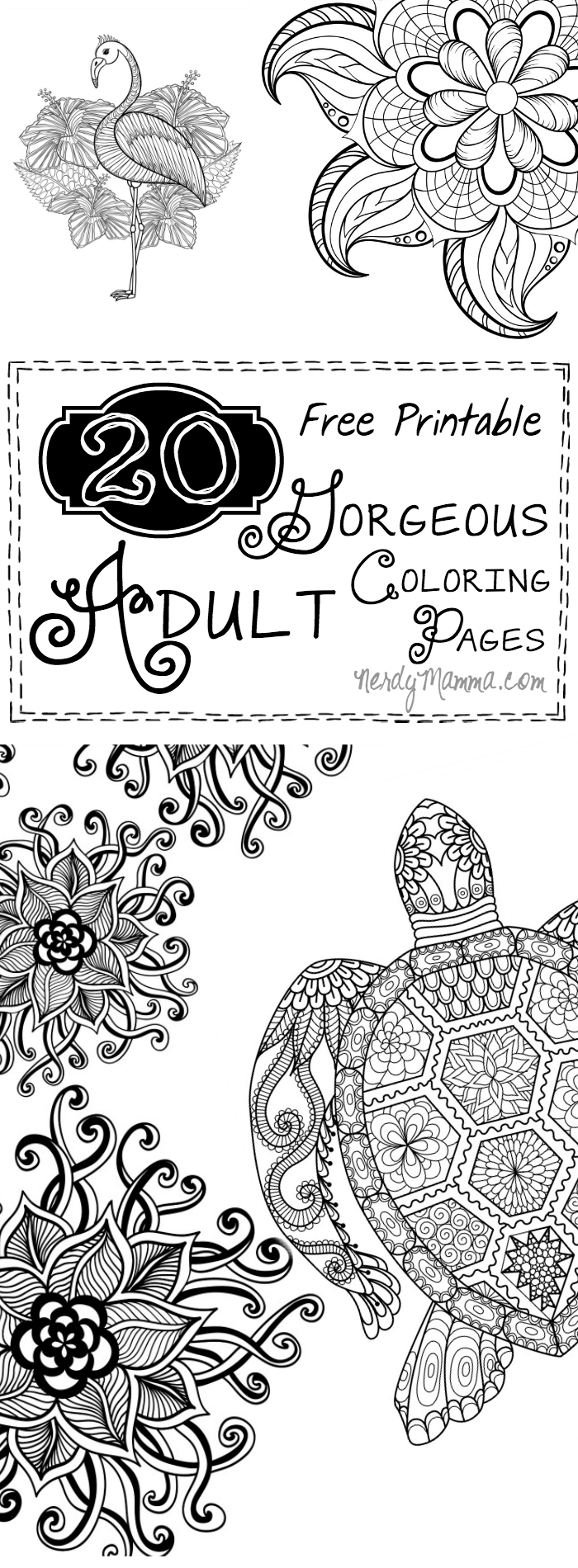 These 20 Free Printable GORGEOUS Adult Coloring Pages are so pretty ...